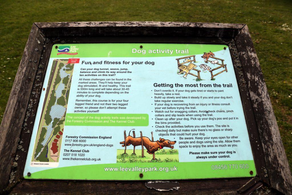 Dog_activit_trail