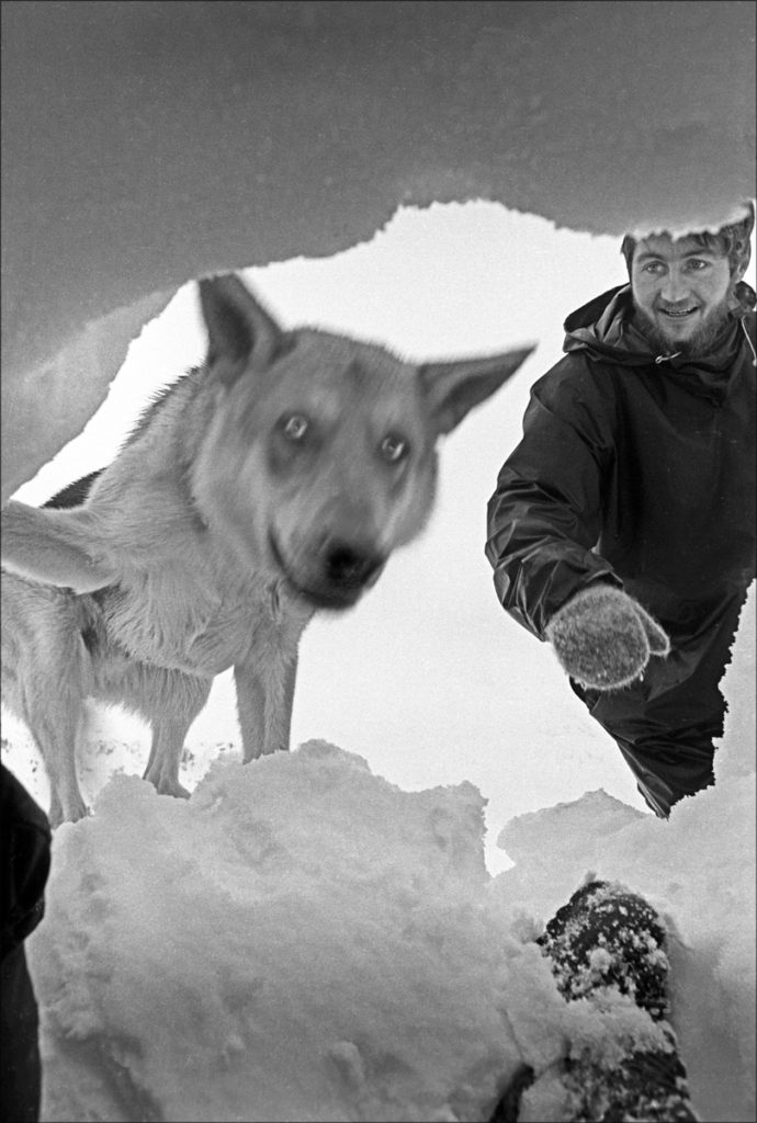 SEARCH + RESCUE DOGS - avalanche victim's eye view of rescue by Alsatian 'Glen' who has led his handler - rescue team member Pete Thomas, a mountain guide from the Isle of Skye - to the buried casualty. SRDA Training Course, Glencoe, December 1965. ref: 1691-K-12 © JOHN CLEARE / Mountain Camera Picture Library