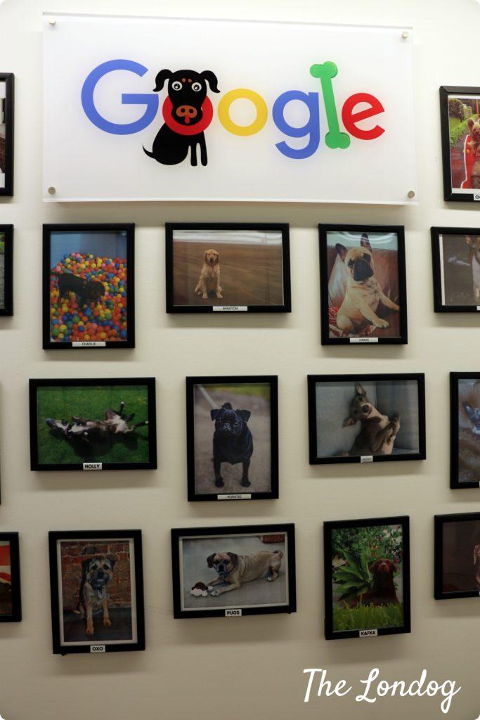googledogs