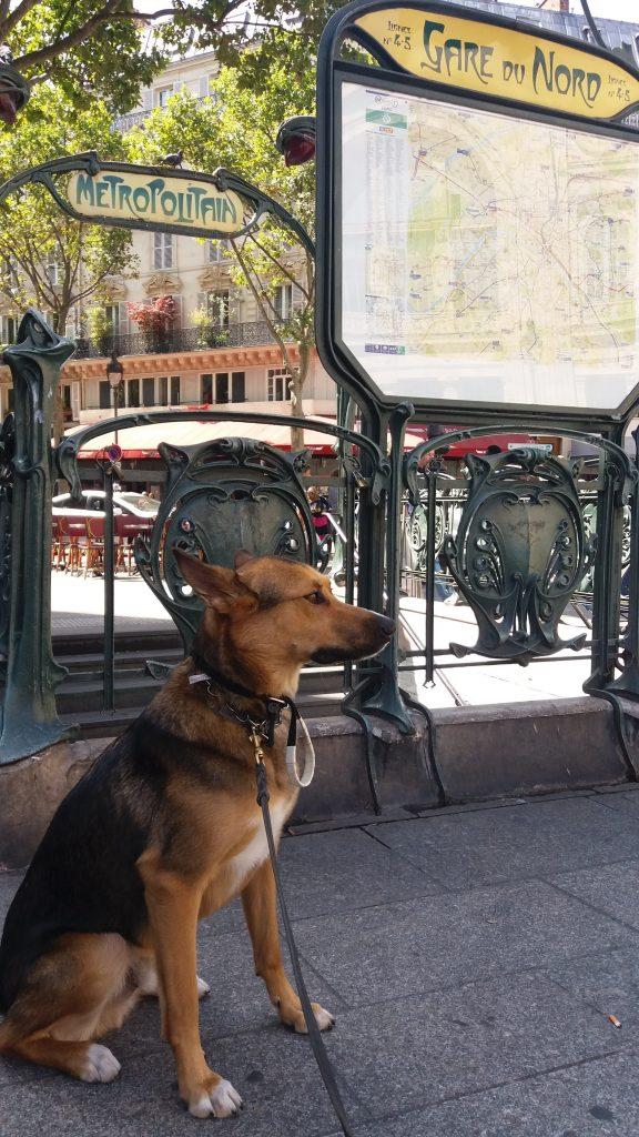 2.25pm Paris. Ou se trouve la Gare du Nord?