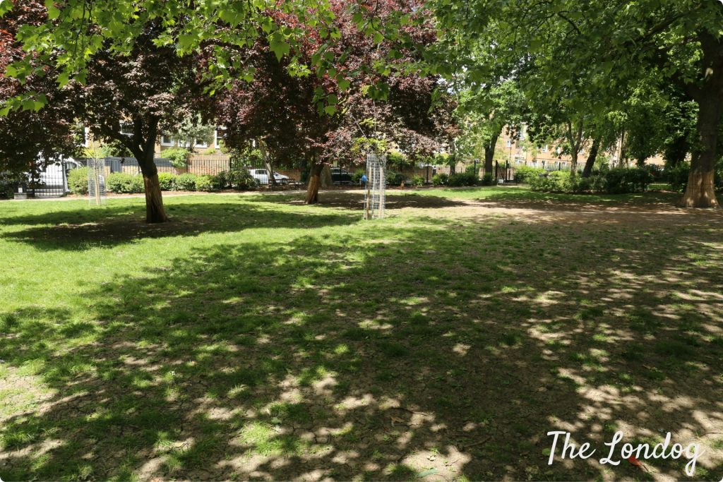 Guide To North London Enclosed Dog Areas The Londog