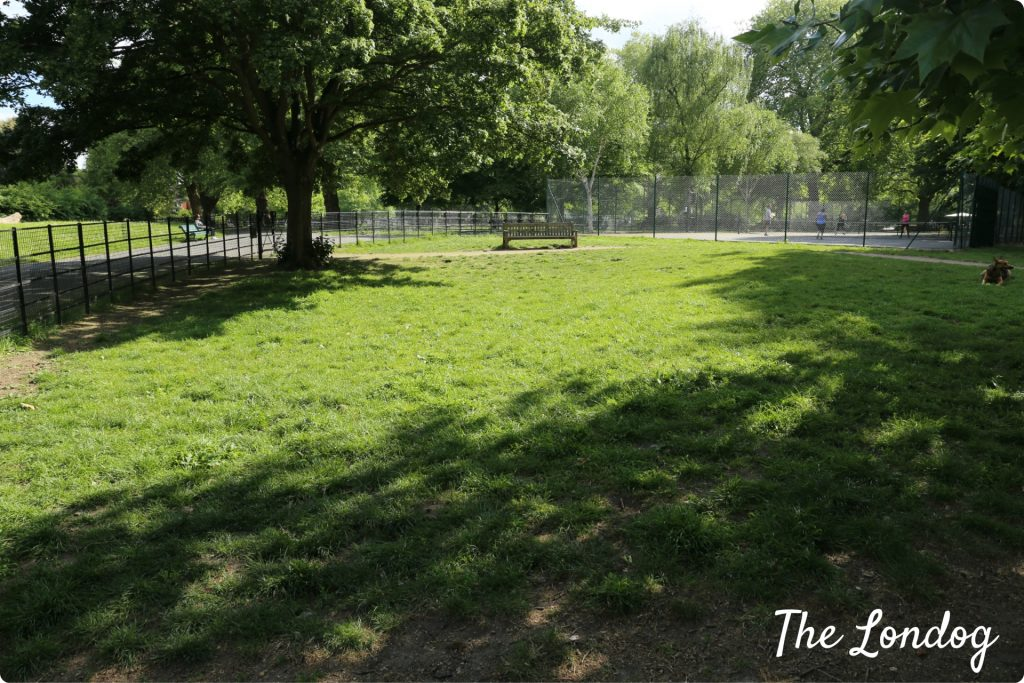 Myatt's Fields enclosed dog exercise area