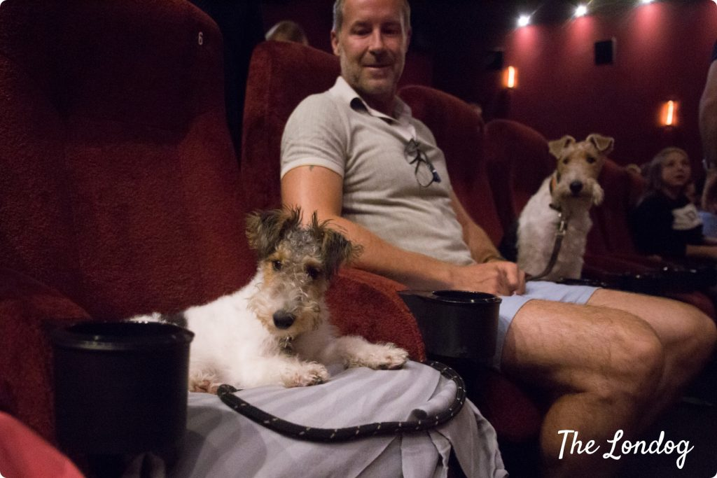 Dog-friendly cinema Piccadilly | Copyright TheLondog.com