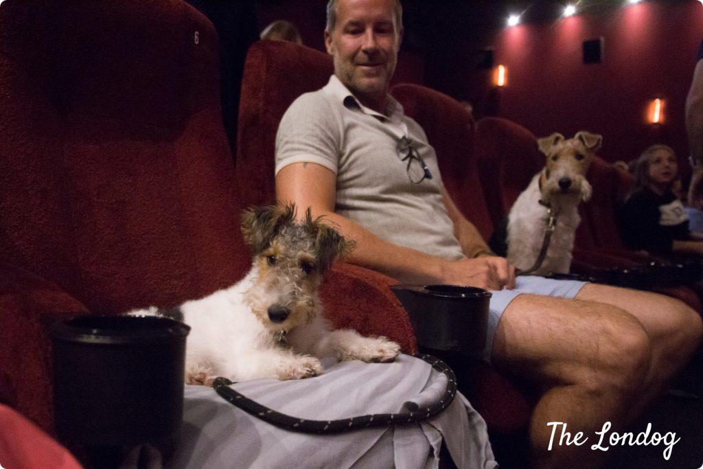 Dog-friendly cinema Piccadilly | Copyright TheLondog.com