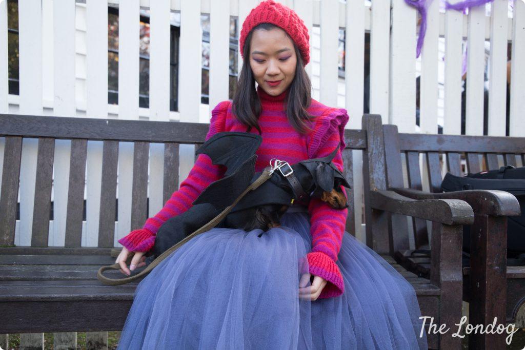 Halloween dog ADM