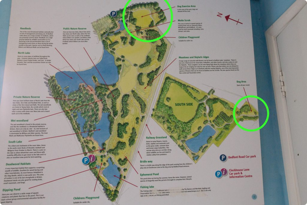 Map of Bedfont Lakes Country Park with dog areas highlighted