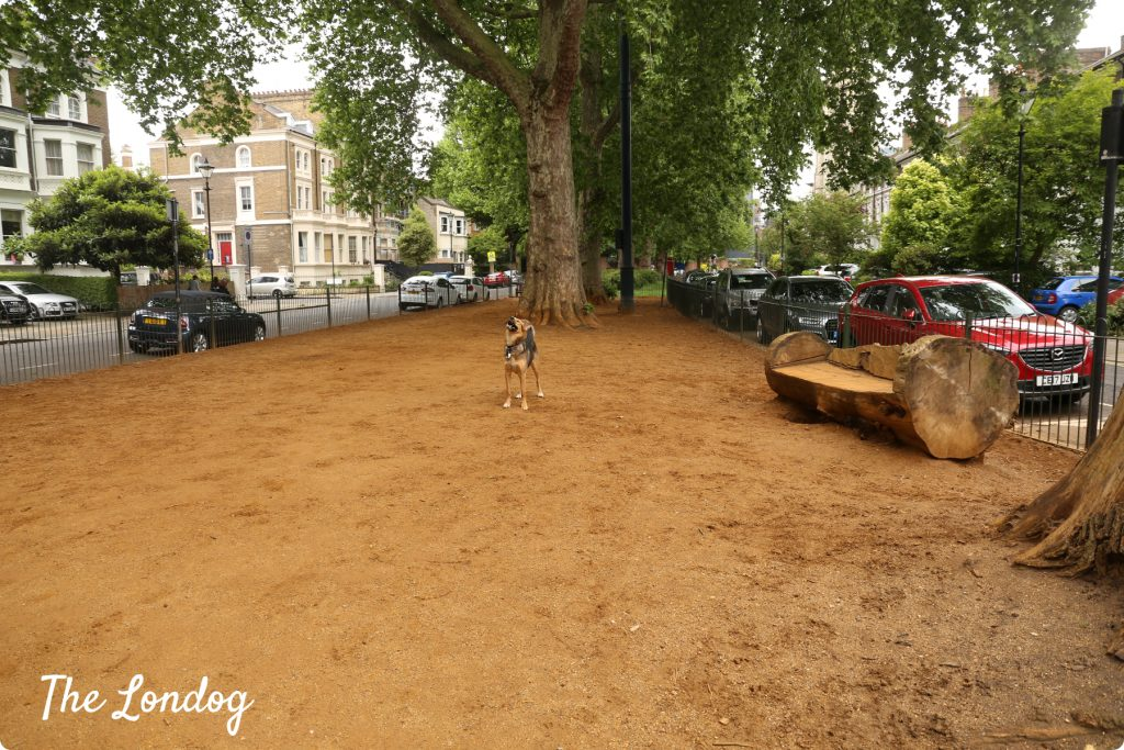 Brook Green dog area