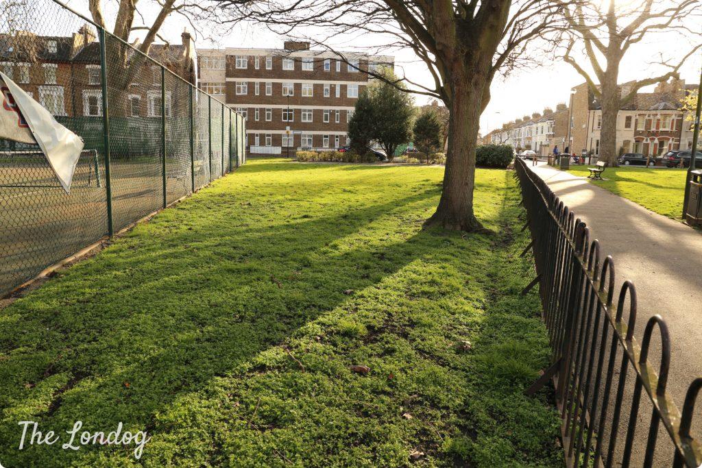 Eel Brook Common dog exercise area