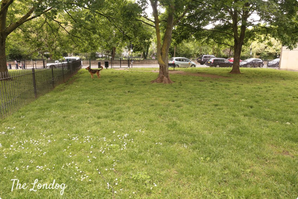 Gwendwr Road Open Space dog park