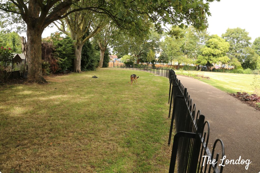 Wormholt Park dog area | The Londog. com