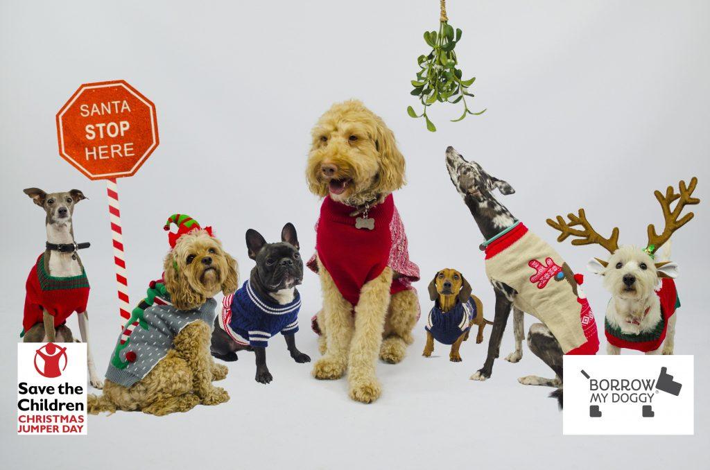 BorrowMyDoggy_Dog-Christmas-Jumper-Day
