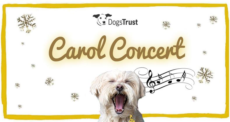 Dogs Trust Christmas Carol Service