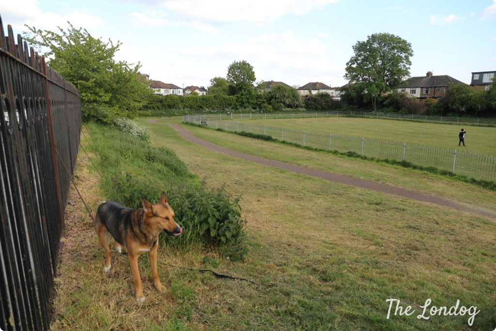 Aldersbrook Avenue Recreation Ground dog park