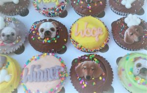 pupcakes at the Great Bark Off