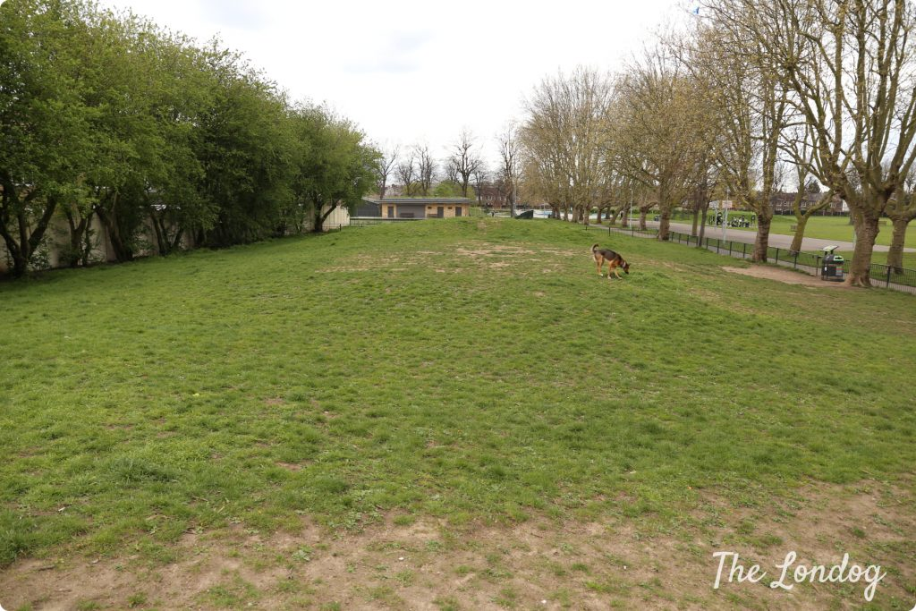 Lloyd Park dog exercise area