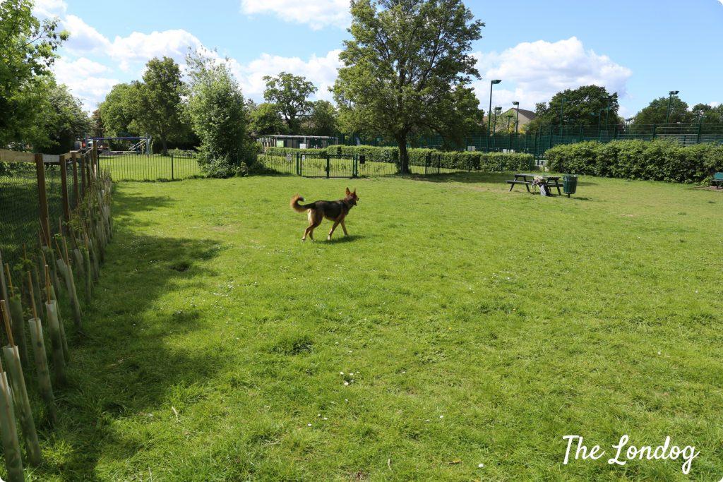 Ridgeway Park dog area