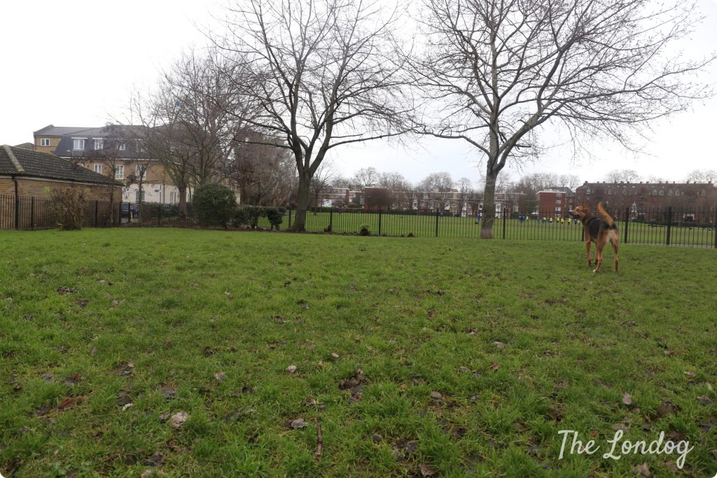 Stepney Green dog area