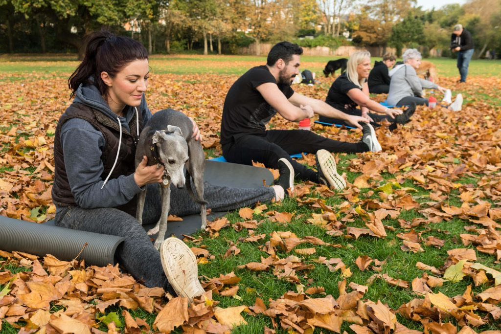 Power Paws Fitness class