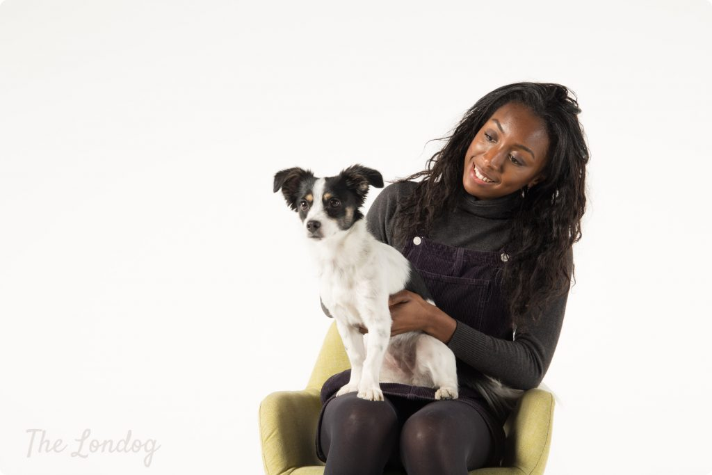 Girl looks at a small dog on her lap while sitting on a chair for a dog photoshoot