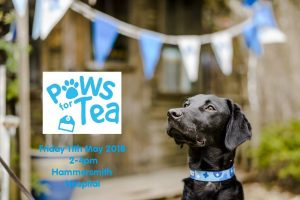 Flyer of the Paws for Tea event, with black labrador with blue collar looking up