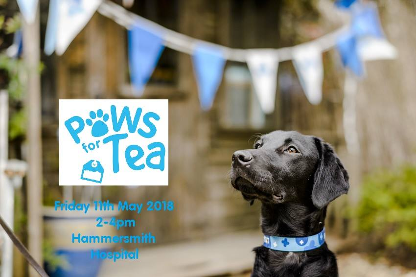 Paws for Tea 2018