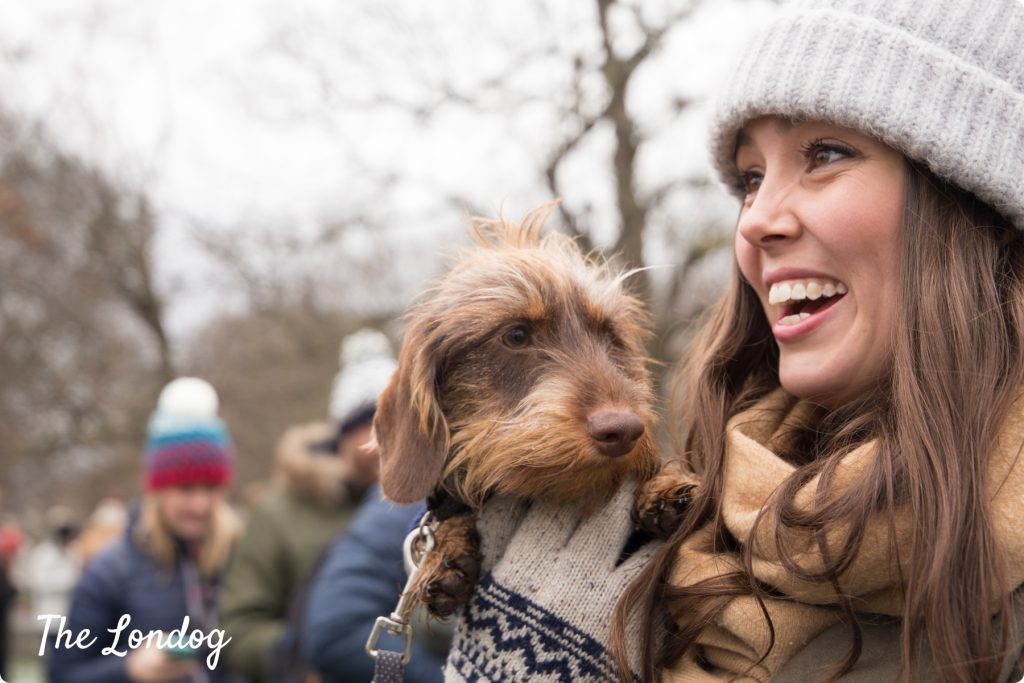 Sully the sausage dog at the Sausage Walk London