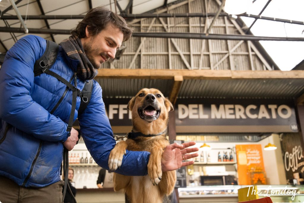 Argo the dog at Mercato Metropolitano in South London puts his paws on his human friend's arm while looing at the camera