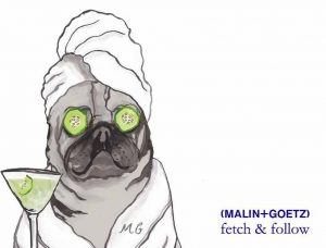 Drawing of pug with cucumber on eyes