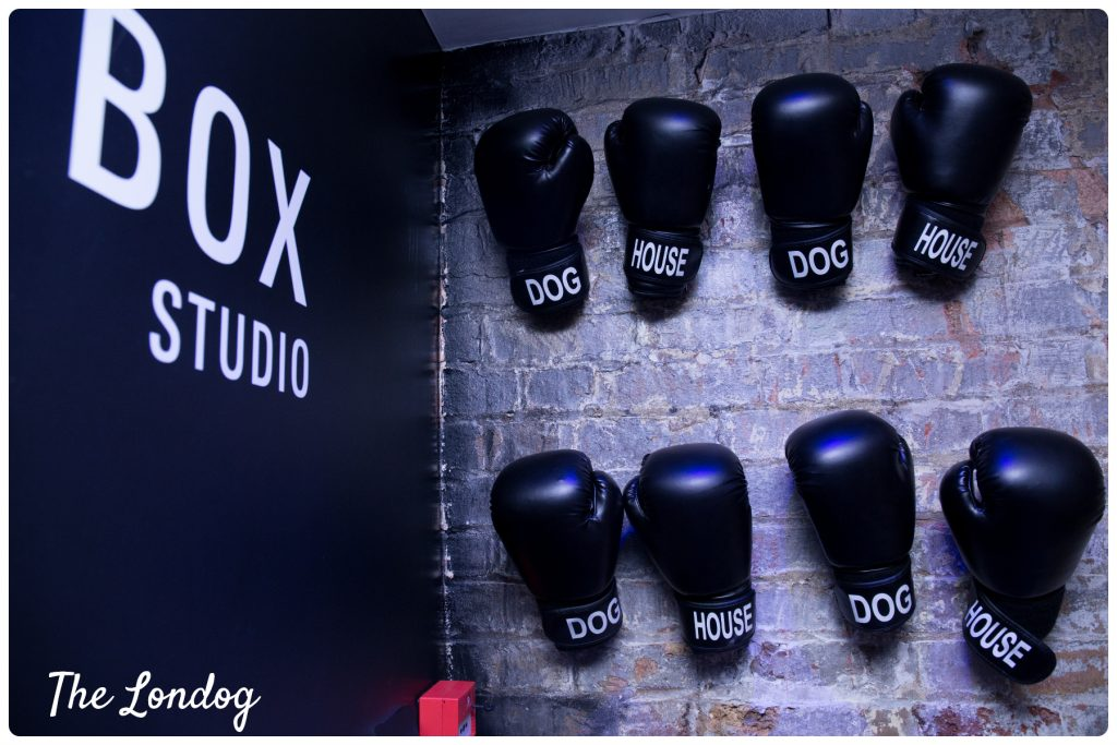 Dog House Fitness box gloves