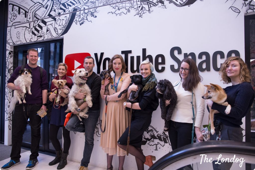 The Dooglers, the dogs of Google, pose in front of the YouTube Space white wall