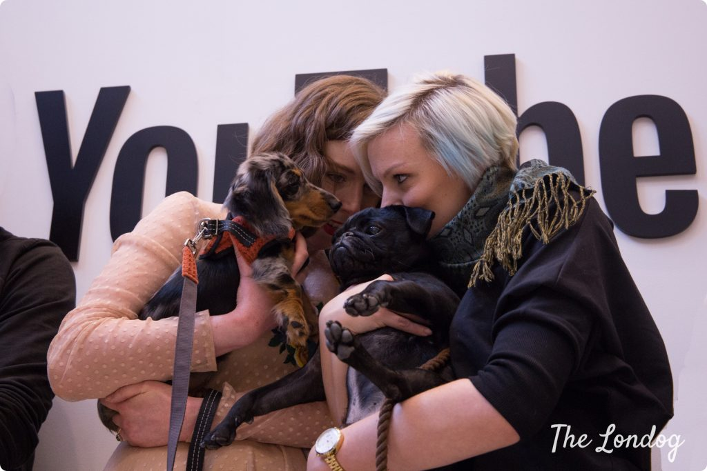 Ladies hold pug and dachshund close at the YouTube Space London