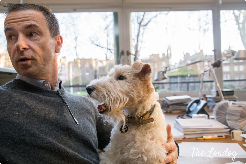 Macy the fox terrier sits on the lap of Andrew Tuck, editor of Monocle, at the office