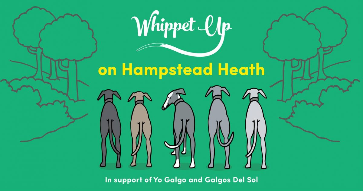 Whippet Up April edition