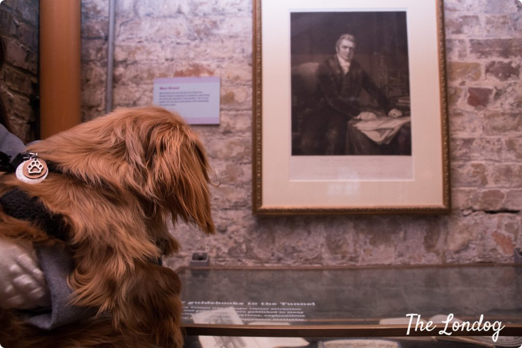 Dog at the Brunel Museum