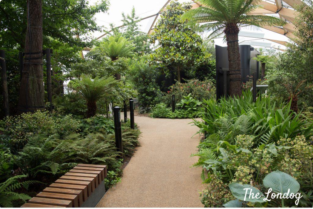 Crossrail Place Rooftop Garden