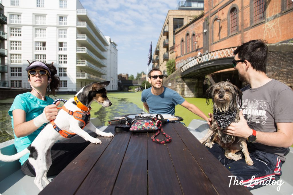 Dog-friendly boat in London Regents Canal for hire