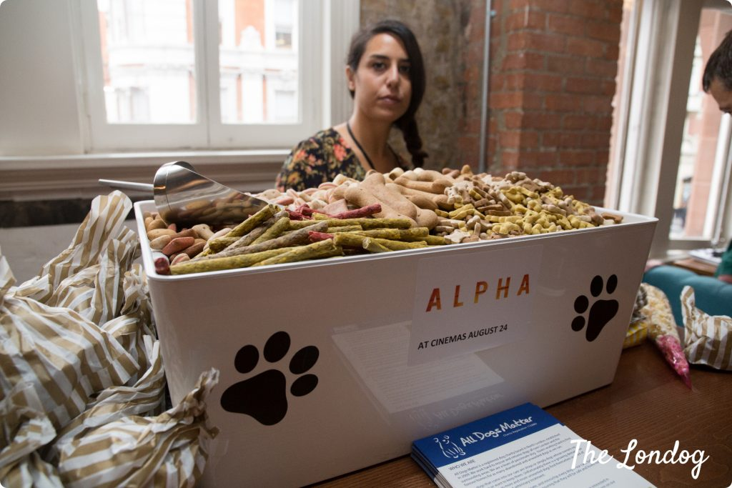 Dog treats at Alpha movie's screening