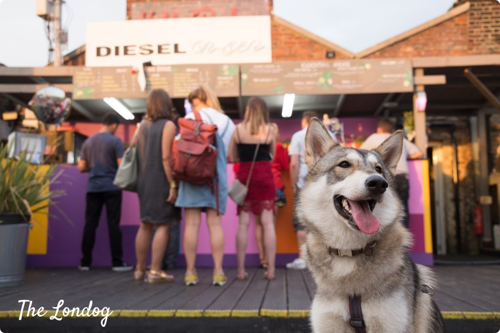 Dog-friendly Bussey Rooftop Bar