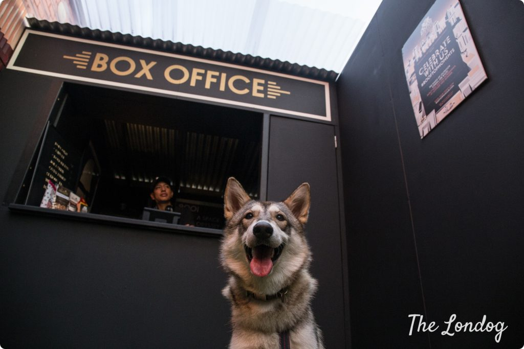 Dog-friendly cinema Rooftop Film Club
