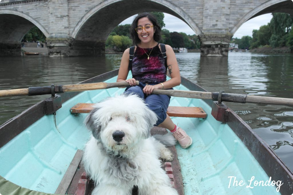 Dog-friendly rowing boat in Richmond London