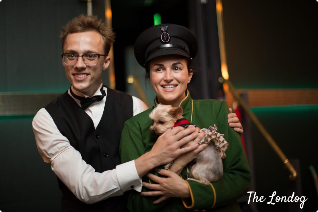 The Murder Express immersive experience dog-friendly show