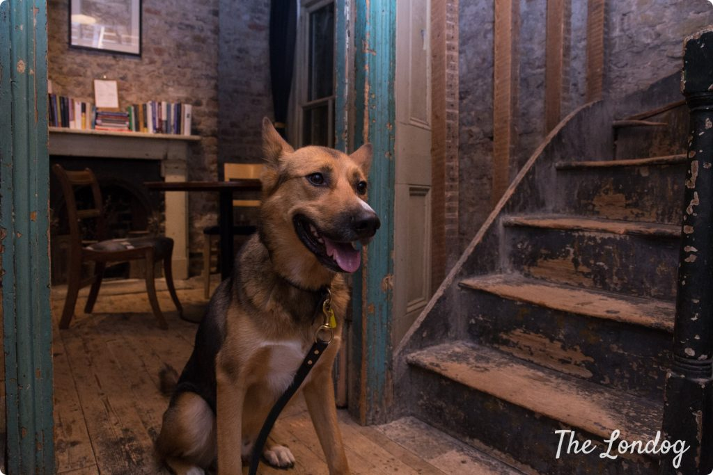 Dog-friendly Open House London Wilton's Music Hall