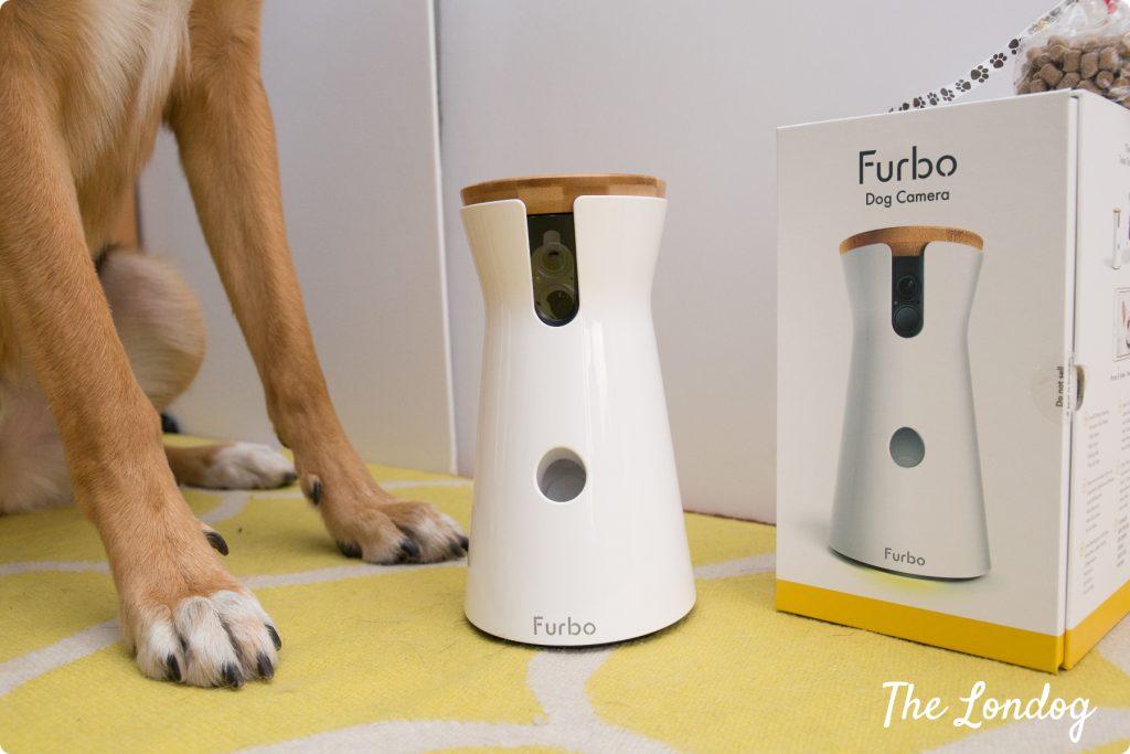 Dog paws with Furbo Dog Camera