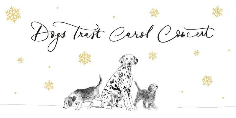 Poster of Dogs Trust Christmas Carol