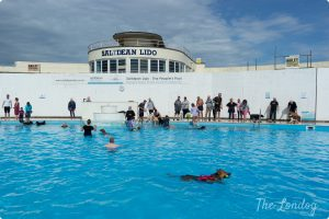 Saltdean Lido dog swim