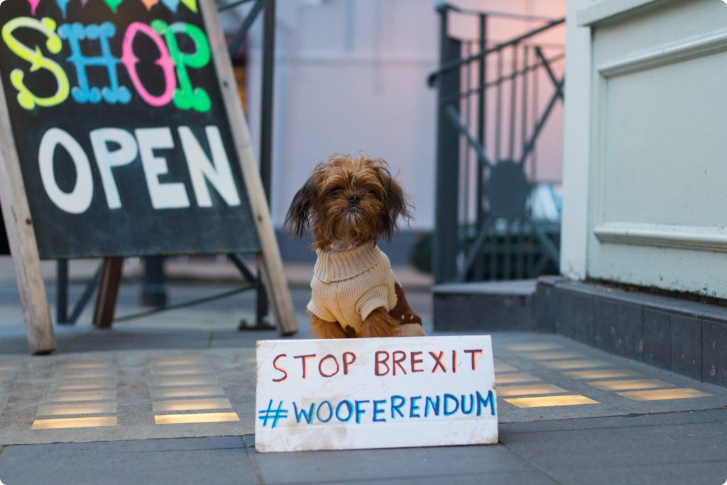 Little dog with Stop Brexit Wooferendum sign