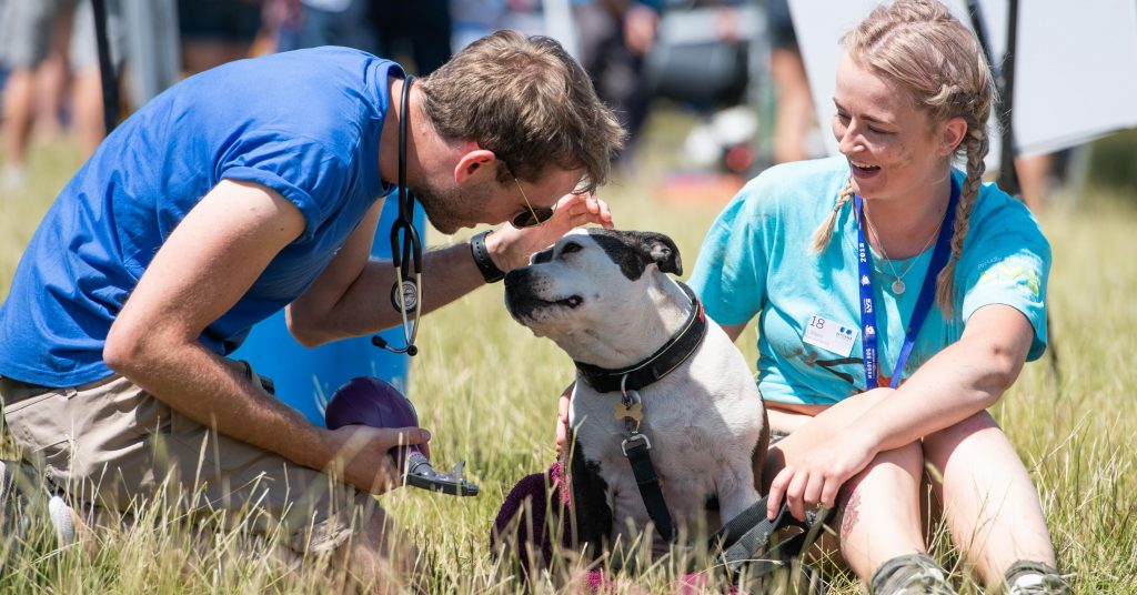 Battersea dog event official image