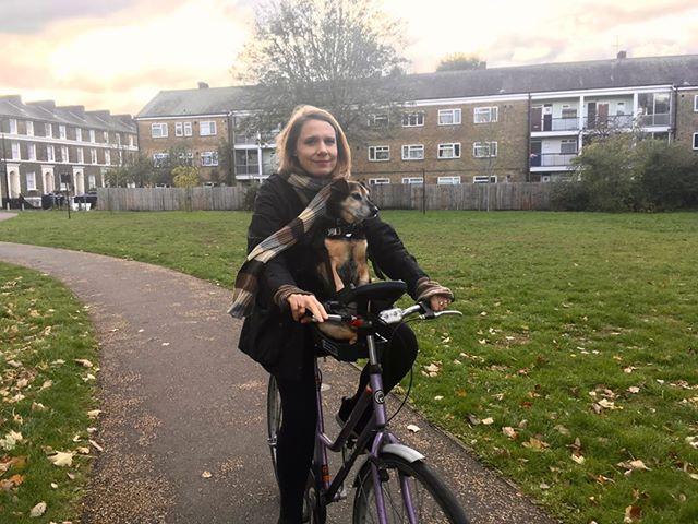 Dog on Buddy Rider