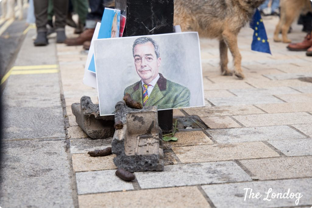 Dog poo under photo of Farage at Wooferendum