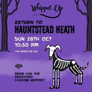 Whippet Up Halloween 2018 event poster